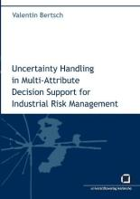 Uncertainty handling in multi-attribute decision support for industrial risk management