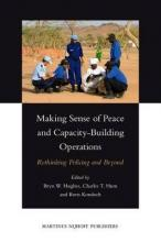 Making Sense of Peace and Capacity-Building Operations