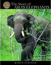 The Story of Asia's Elephants