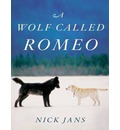 A Wolf Called Romeo (Library Edition)