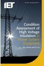 Condition Assessment of High Voltage Insulation in Power System Equipment