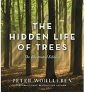 The Hidden Life of Trees (Illustrated Edition)