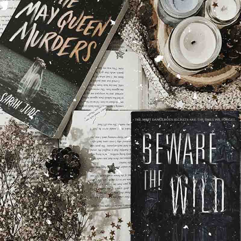 Beware the Wild Natalie C Parker Book Cover